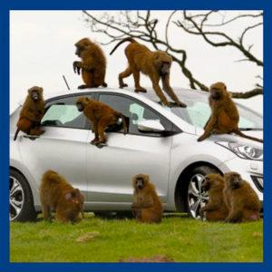 Как проверить автомобиль перед покупкой? Чек-лист!